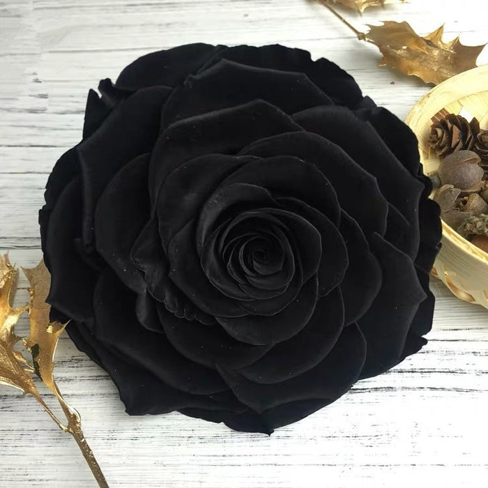Eternal Black Rose