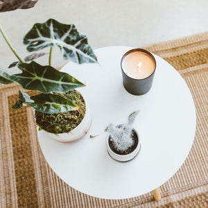 Fig + Seagrass Matte Black Candle