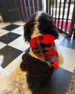 Pet Bandana Red Plaid