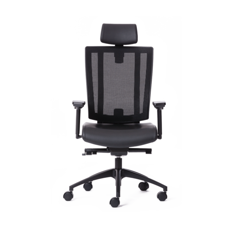 NetOne® High Back Ergonomic Office Chair - Ergo Test