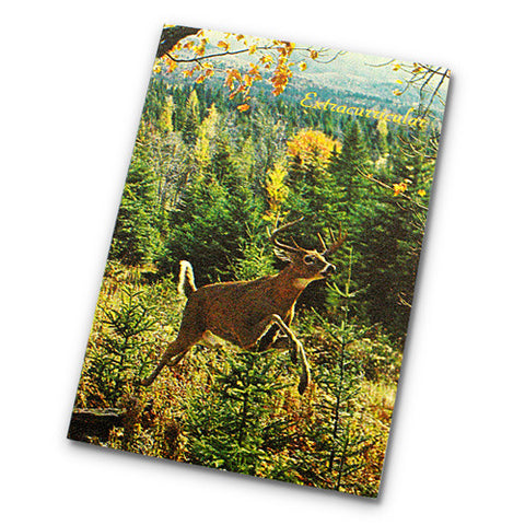 Canadiana Field Notes Journal - Deer