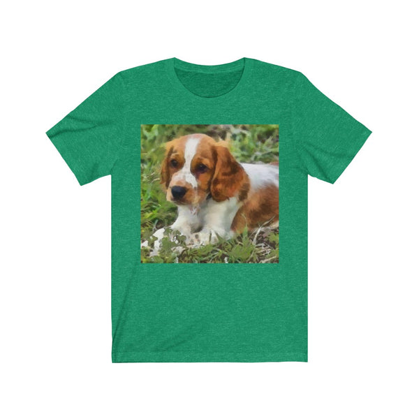 Welsh Springer Spaniel - Unisex Jersey Short Sleeve Tee