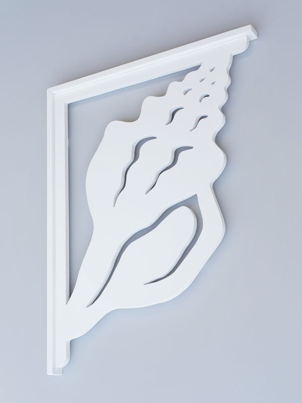 Conch Decorative Bracket-Nature Brackets
