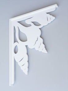 Shell Collection Decorative Bracket