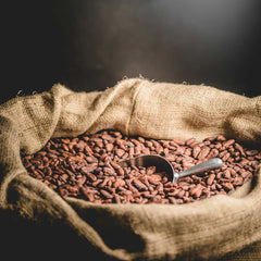 Raw Cacao Beans - Fermented, Dried and Roasted - Premium Ecuadorian Arriba Nacional Type