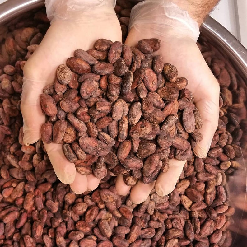 Raw Cacao Beans - Fermented, Dried and Roasted