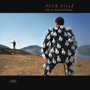 PINK FLOYD <br/> <small>DELICATE SOUND OF THUNDER (LIV</small>