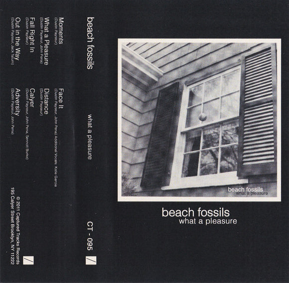 BEACH FOSSILS <br/> <small>WHAT A PLEASURE</small>
