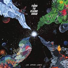 ARMON-JONES,JOE <br/> <small>TURN TO CLEAR VIEW (OFGV) (REISSUE)</small>