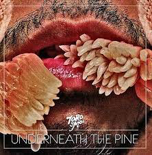TORO Y MOI <br/> <small>UNDERNEATH THE PINE</small>