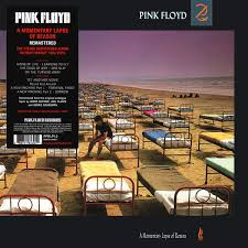 PINK FLOYD <br/> <small>MOMENTARY LAPSE OF REASON(UK)</small>