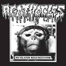 AGATHOCLES <br/> <small>MUTILATED REGURGITATOR</small>