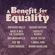 VA-A BENEFIT FOR EQUALITY <br/> <small>VOL. 1</small>