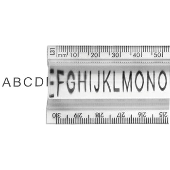 RULERS, PLASTIC, 30cm/300mm Magnifying, Each