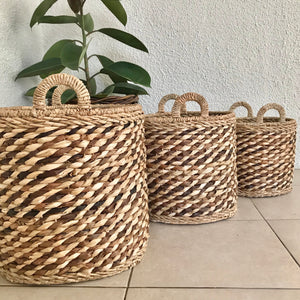 Lady Palm Round Basket