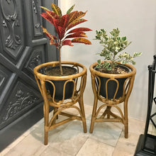 Load image into Gallery viewer, Chestnut Rattan Plant Stand