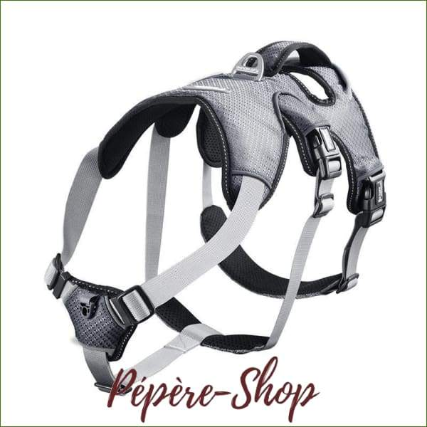 Harnais berger allemand - PEPERE SHOP