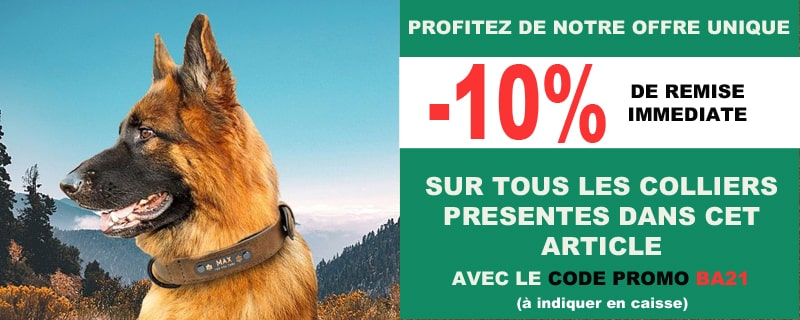 Offre promo colliers pour bergers allemands