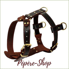 Harnais en cuir pour grand chien qui tire , 3 points d'attache - Brown / XL-PEPERE SHOP