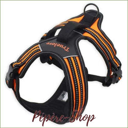 Harnais TRUE LOVE - modèle FOREST pour grand chien - Orange / XS 43-49cm-PEPERE SHOP