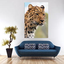 Load image into Gallery viewer, Leopard