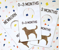 Chocolate Lab Nursery Closet Dividers