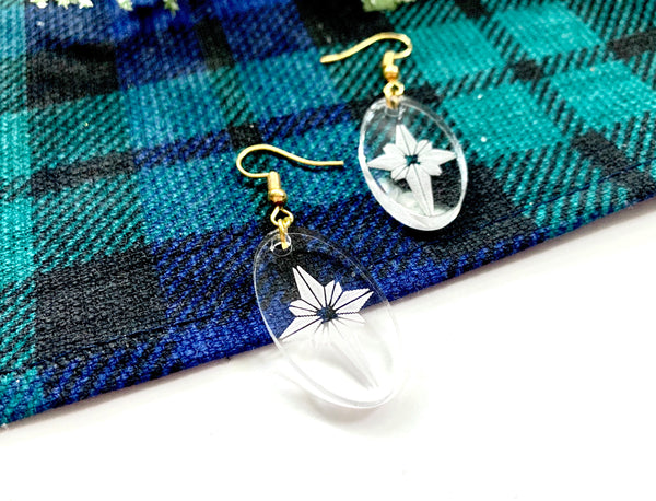 Clear Celestial Star Earrings, Acrylic