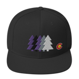 Colorado Forest Baseball Classic Snapback Hat