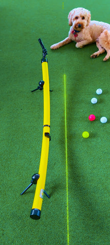 YellowDog Putting Training aid original placed on putting surface with attached laser displaying a green target line on ground. Coloured golf balls placed beside in. Also Yellow dog lying on ground in back ground looking face on.