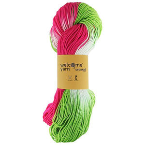 Degradé Yarn Pink and Lime