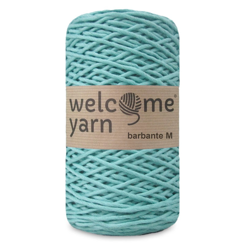 Barbante Yarn Black Mint Green