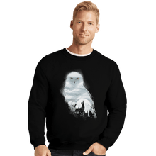 Load image into Gallery viewer, Shirts Crewneck Sweater, Unisex / Small / Black Magical Owl