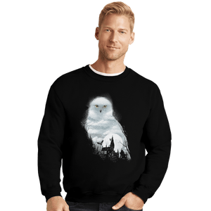 Shirts Crewneck Sweater, Unisex / Small / Black Magical Owl