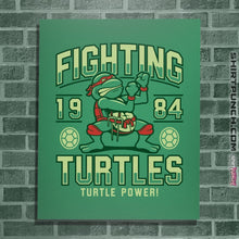 Load image into Gallery viewer, Fighting Turtles