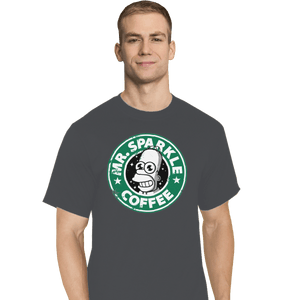 Shirts T-Shirts, Tall / Large / Charcoal Mr. Sparkle Coffee