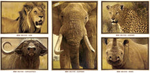 Load image into Gallery viewer, The Big Five - Elephant by John Banovich