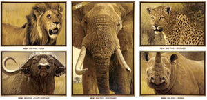 The Big Five - Elephant by John Banovich