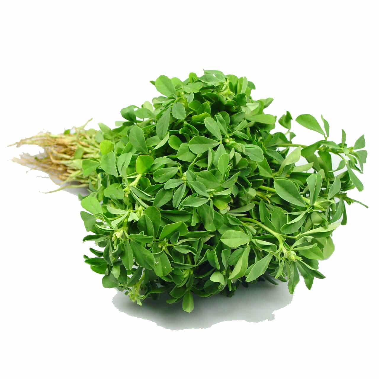Fenugreek leaves (Methi Bhaji)