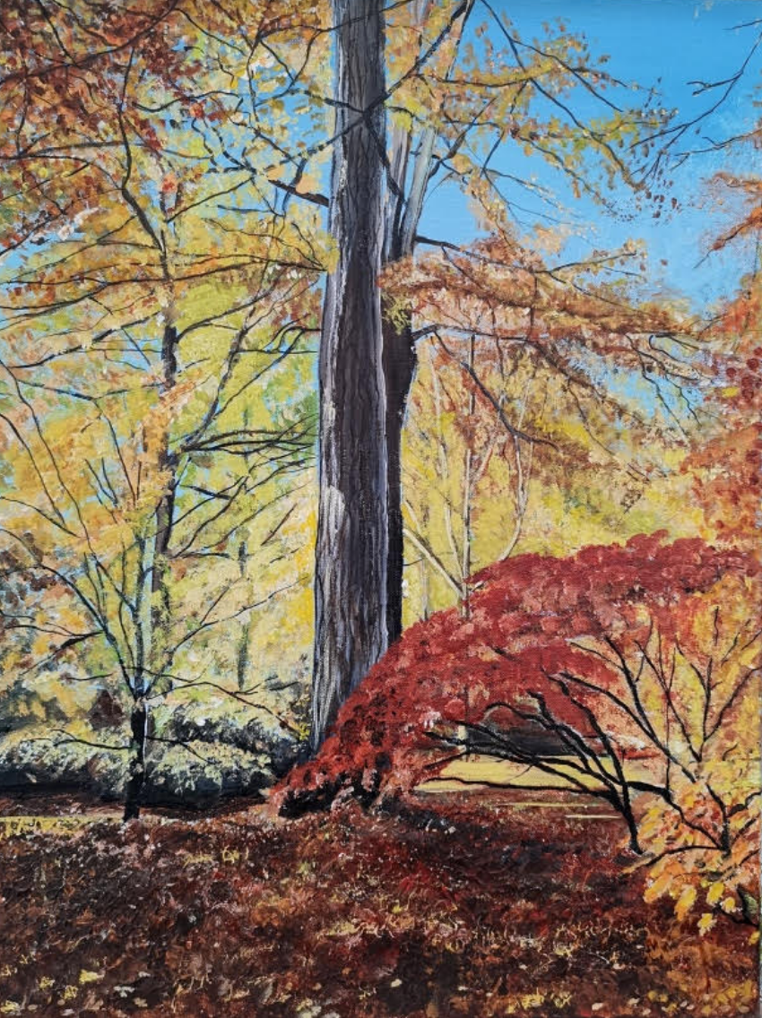 International Art - Autumn Glow - (Painting by UK Artist Sue O'Sullivan)
