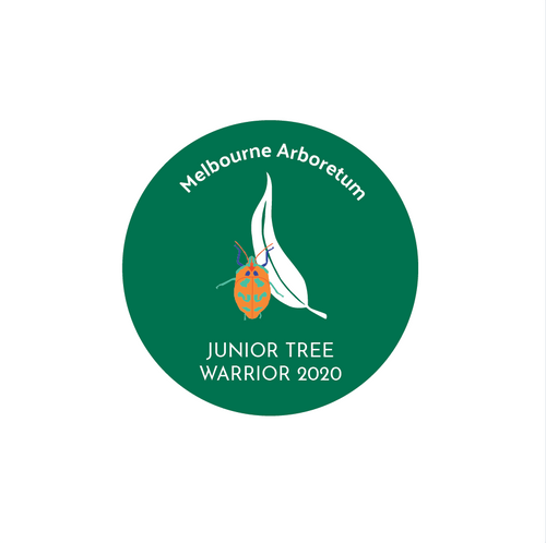 Membership - Junior  - 1 year