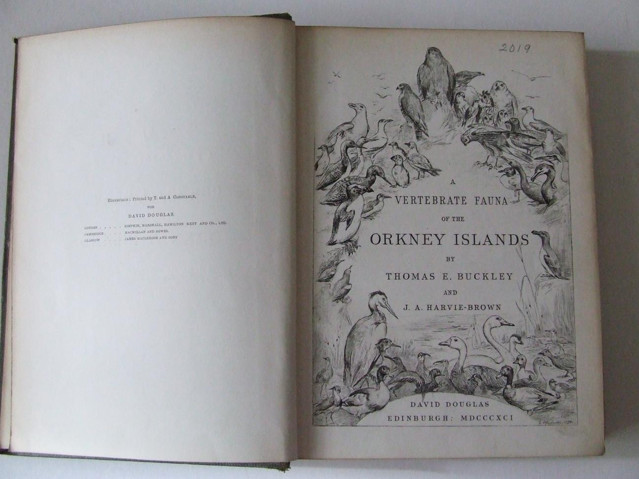 A Vertebrate Fauna of the Orkney Islands