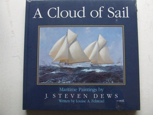 A Cloud of Sail
