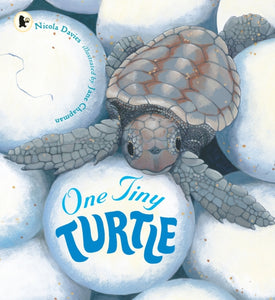 One Tiny Turtle-9781406364637