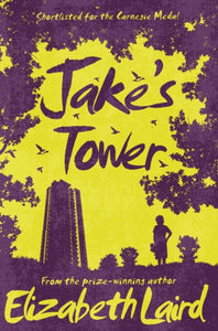 Jake's Tower-9781509826711