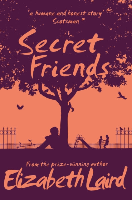 Secret Friends-9781529015409