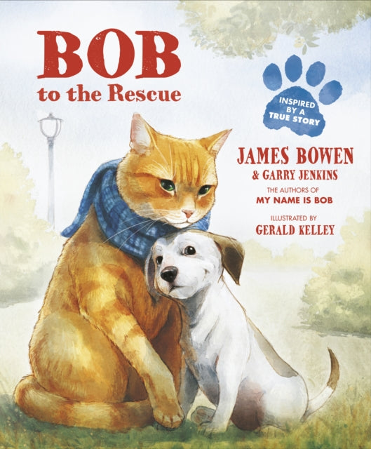 Bob to the Rescue : An Illustrated Picture Book-9781782954859