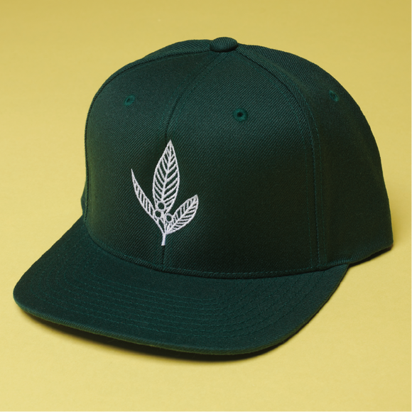 SNAPBACK - FOREST GREEN