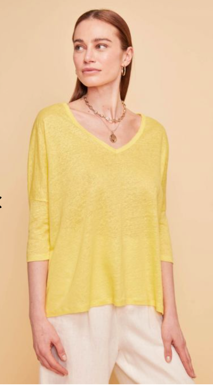 Not Shy - V Neck Knit