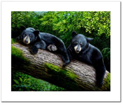 Bear Necessities Giclee Prints