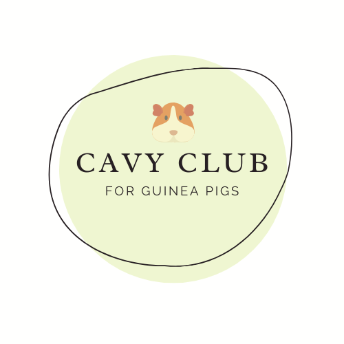 Cavy Club Gift Card